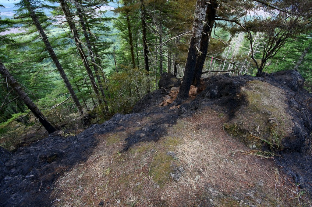 Saddle Mountain fire